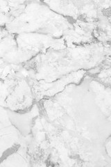 White marble texture background floor decorative stone interior stone