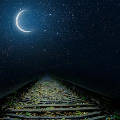 Wall Mural -  railway at night