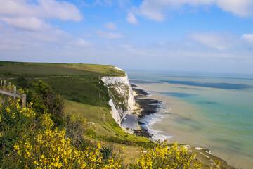 The White Cliffs, Devon