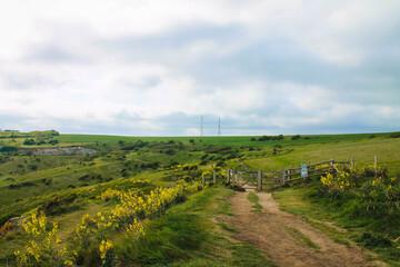 Trekking Path in Devon Countryside