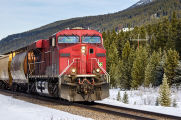 Cargo Train Through Forested Mountains on a Sunny Winter Day