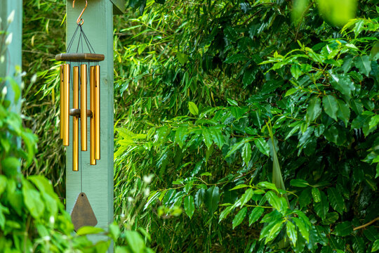 brass tubular style wind chimes hanging from pergola in garden