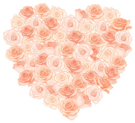 Vector illustration of realistic, detailed heart bouquet in peach colour on white background. Illustration for design.