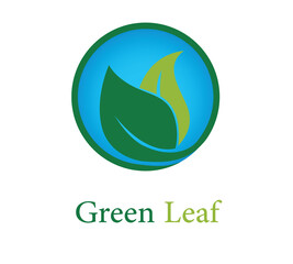 Green Leaf Logo Illustrator Design