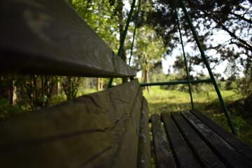 swing in the garden