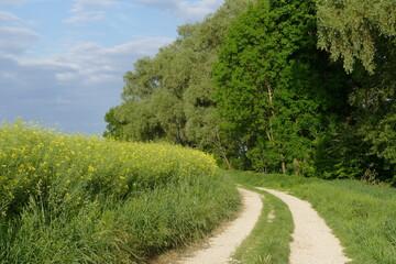 Bayerische Natur im Mai