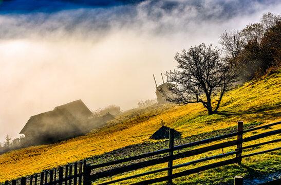rural area at foggy autumn sunrise