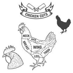 Chicken butcher diagram. Design element for poster, menu. Vector illustration