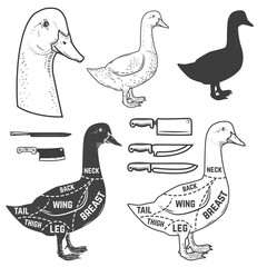 Goose cuts butcher diagram. Design element for poster, menu. Vector illustration