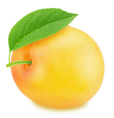 Ripe yellow plum with green leaf. With clipping path