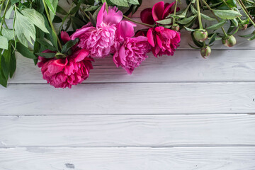 White and pink peonies on a white wooden background, top view