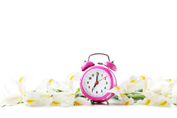 Bouquet of iris flowers with alarm clock on white background