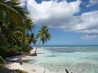 Saona - Dominikanische Republik
