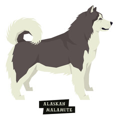 Dog collection Alaskan Malamute Geometric style Isolated object