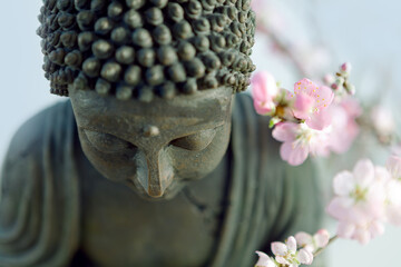 Buddha's head with blossom cherry branches