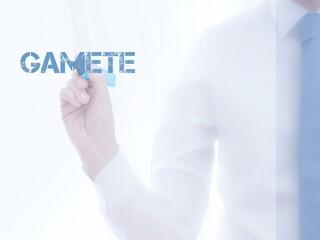 Gamete