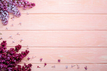 The beautiful lilac on a pink wooden background, copy spase