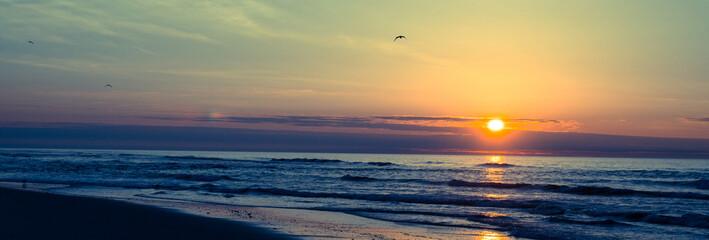 Sunrise beach landscape with seagulls