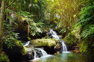 Onomea Falls located in Hawaii Tropical Botanical Garden on the Big Island of Hawaii
