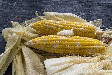 Yellow and white Corn on the cob with melted butter and husks