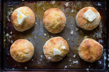 Rustic setting of Homemade Biscuits with melted butter on old cookie sheet