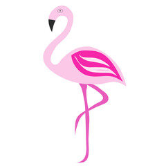pink flamingo vector illustration on white background