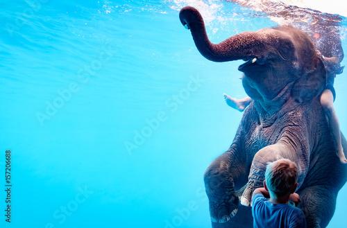 elephant photo libre de droits sur la banque d 39 images image 157206688. Black Bedroom Furniture Sets. Home Design Ideas
