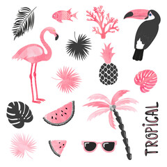 Tropical set in pink and black colors. Flamingo, toucan, watermelon, palm, leaves. Vector collection.