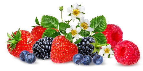 Fototapete - strawberry,raspberry,blackberry, bilberry, blueberries isolated on white