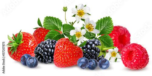 Fototapete strawberry,raspberry,blackberry, bilberry, blueberries isolated on white