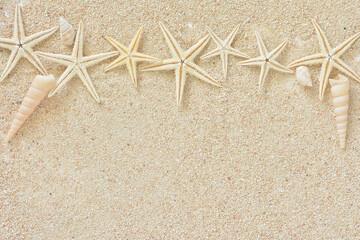 貝殻 ヒトデ サンゴ砂