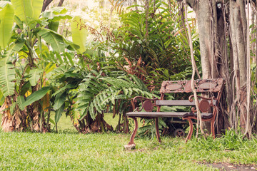 chairs with nature in garden.