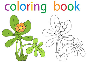 book coloring cartoon flower