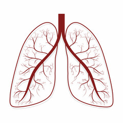 Lungs. Human lungs anatomy symbol
