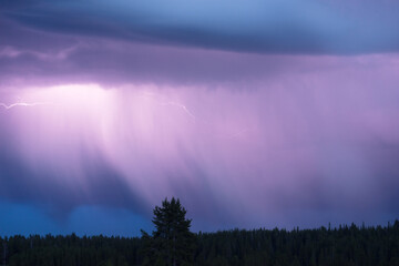 Over Norris Canyon Thunderstorm Lightning Strikes Yellowstone National Park
