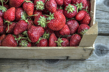 Strawberries in a wooden box