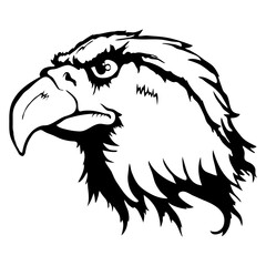 Isolated illustration of an eagle head