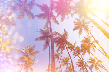 Retro stylized tropical palms with light leaks and golden party glitter