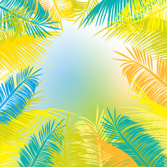 Palm leaves vector background frame. Multicolored leaves against the sky.