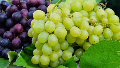 Composition with fresh grapes