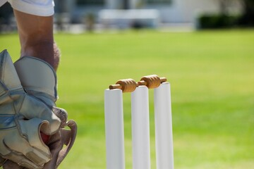 Cropped image of wicketkeeper catching ball behind stumps