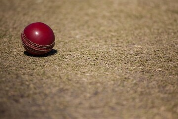 High angle view of cricket ball