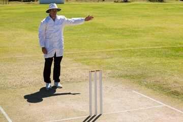 Cricket umpire signalling no ball during match