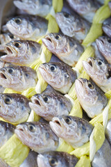 dried yellow corvina