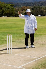 Full length of cricket umpire signalling out during match