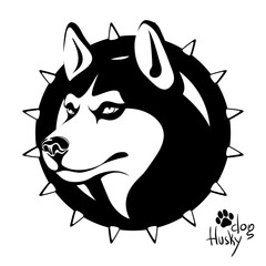 Black and white image of the head of a dog of the Husky breed