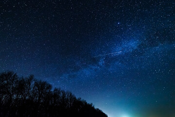 Starry sky and milky way above the trees.