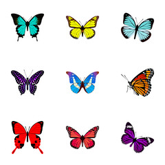Realistic Butterfly, Lexias, Archippus And Other Vector Elements. Set Of Beauty Realistic Symbols Also Includes Purple, Peacock, Violet Objects.