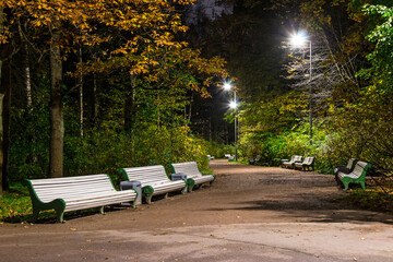 Night view of alley in the Kirov Central Culture and Leisure Park, Saint Petersburg, Russia.