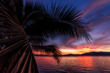 Tropical sunset and foreground Silhouette coconut palm trees on beach